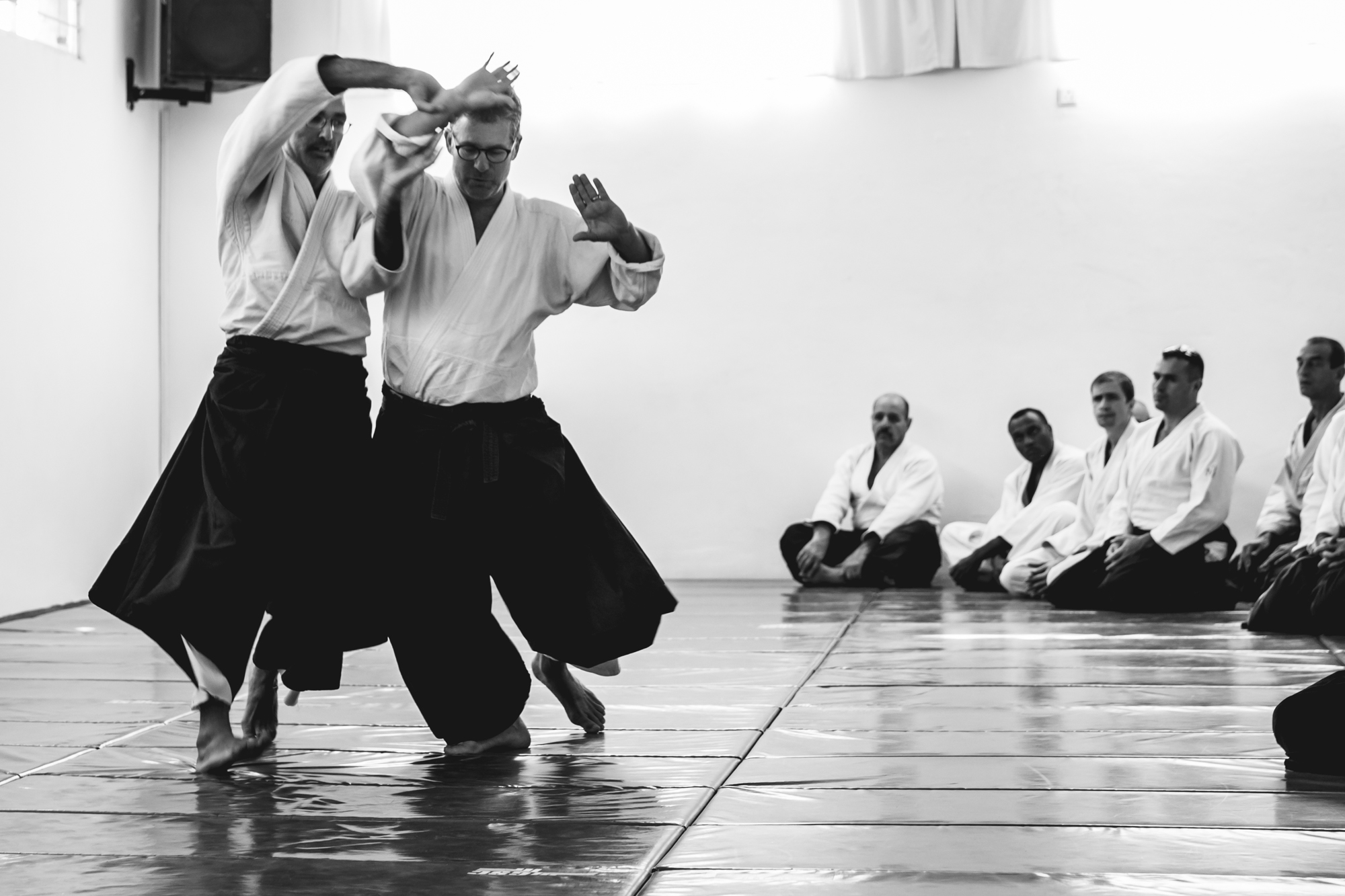 miles kessler, aikido, the integral dojo